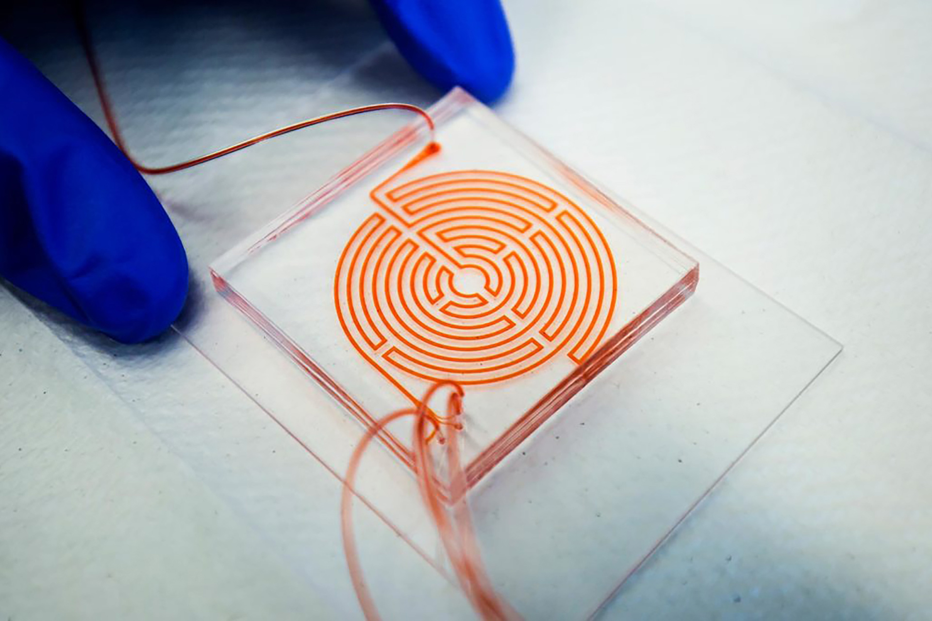 Labyrinth chip developed by Nagrath and Wicha used in clinical trial