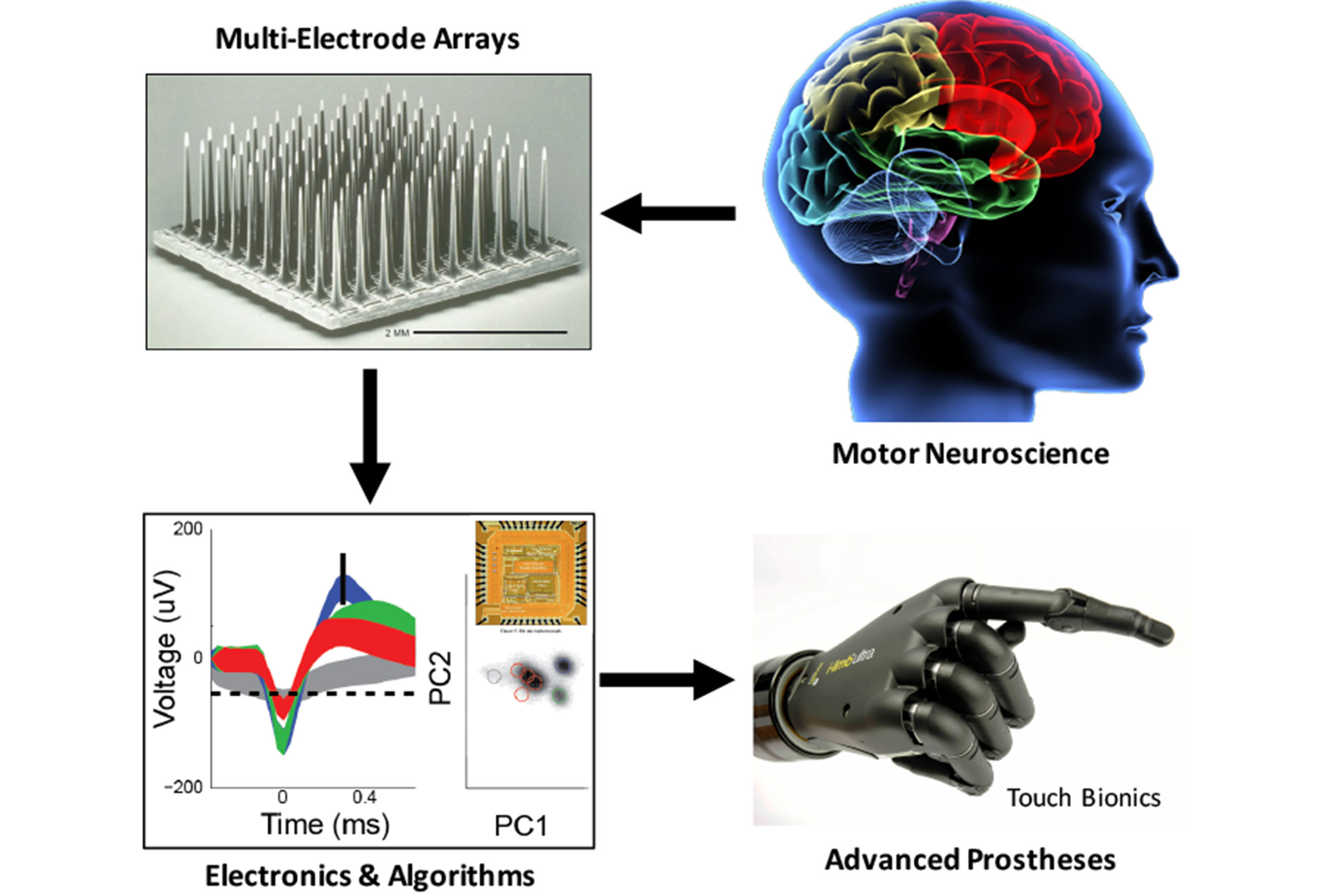 Overview of Brain Machine Interface research happening at BI